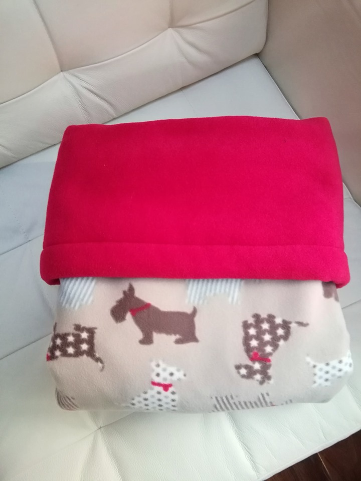 GaryB-Complete-Blanket-its-a-dogs-life-red